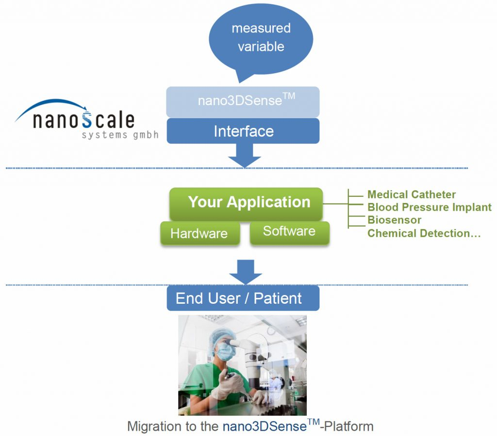 nanoss-migration-english